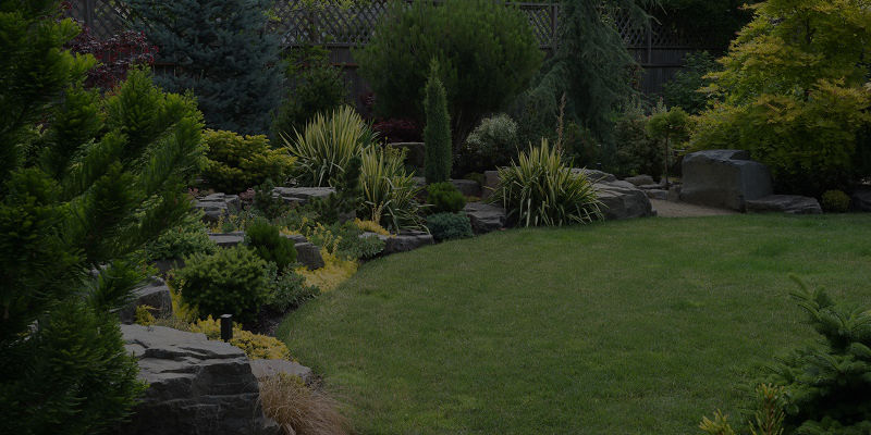 Landscaping & Artificial Grass