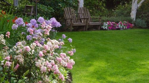 Relaxed garden