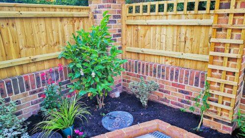 Newly landscaped garden flowerbed