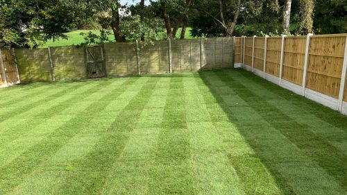 Long turfed garden