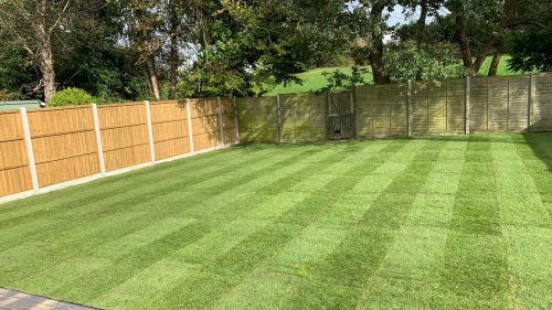 Finished turfed garden